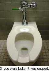 20100412_toilet